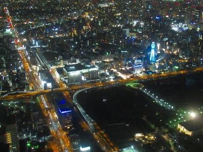 夜天王寺公園.jpg