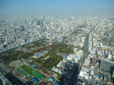 昼天王寺公園.jpg