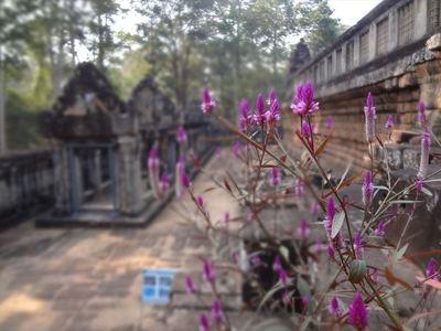 TaKeo寺院 (6)_R.JPG